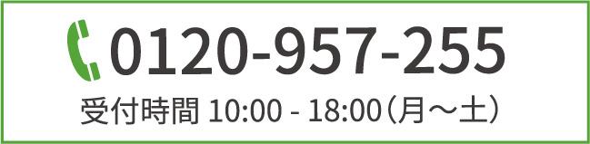0120-957-255,受付時間10:00〜18:00(月〜土)